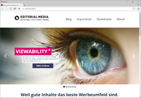 Editorial Media Screenshot Website